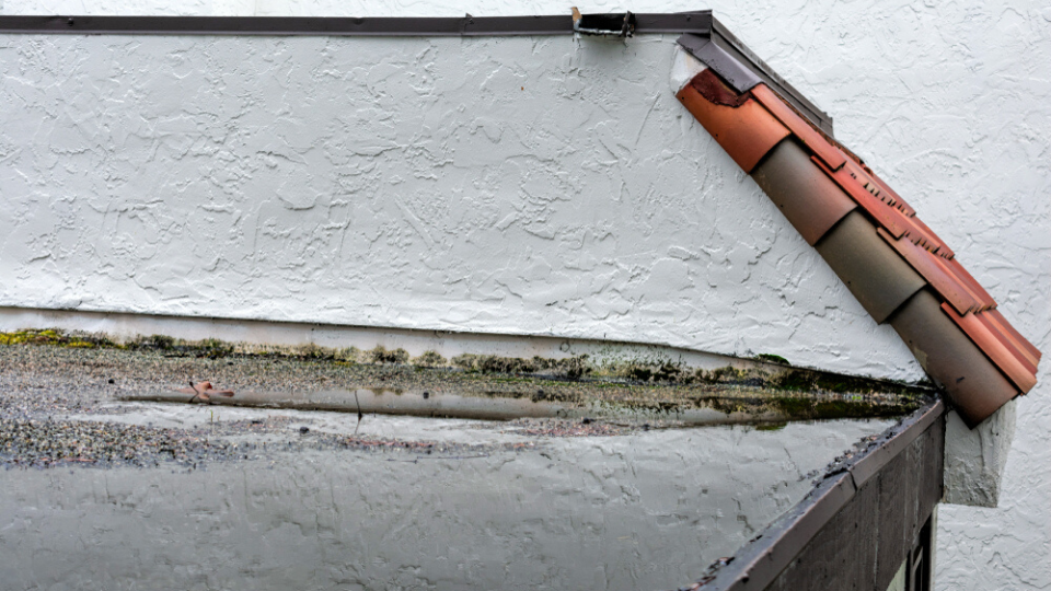 How To Locate a Flat-Roof Leak